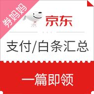 【支付/白条】京东支付白条券汇总